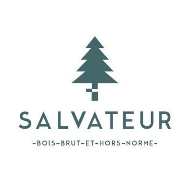 Logo Salvateur